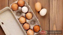 Vitaleggs tojás dobozos 10db M-es méretű