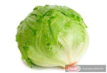 Jég saláta db