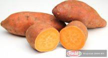 Sladké zemiaky kg