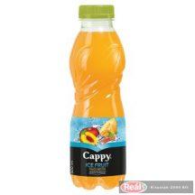 Cappy Ice Fruit gyümölcslé 0,5l alma-?szibar.-sárgadinnye